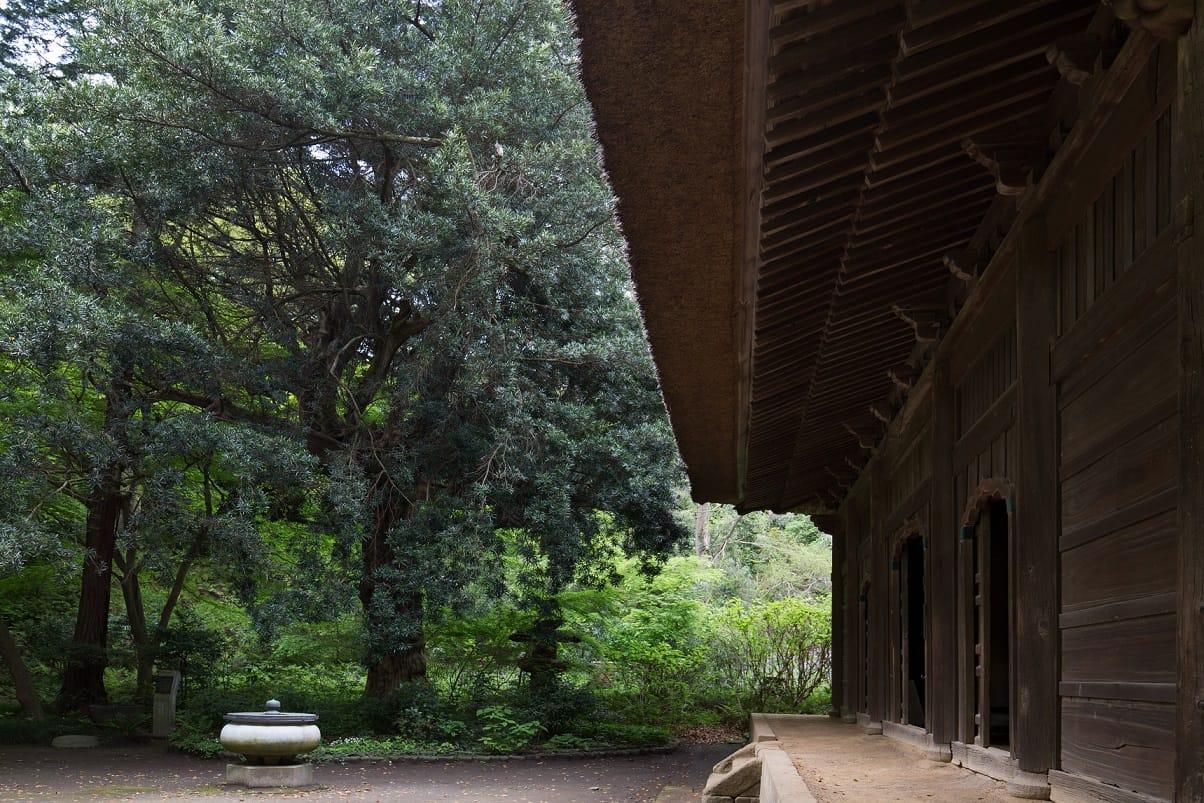 覚園寺(かくおんじ)