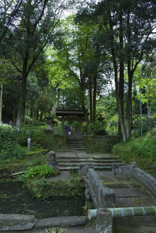 参道入り口には、鎌倉十井の一つである名水甘露の井と太鼓橋がある