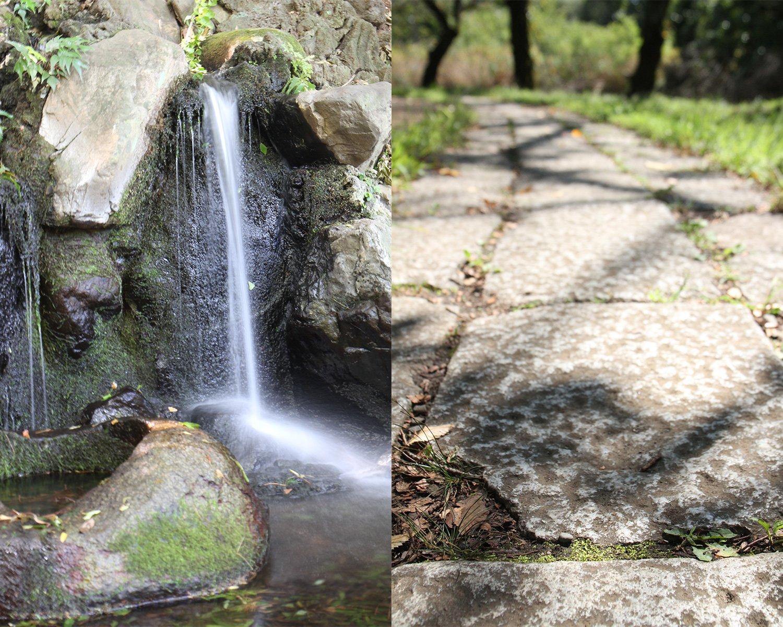 左/かつての湧水のかたちを復元した遅野井の滝。右/旧都電杉並線の敷石を敷いた下の池の並木道。