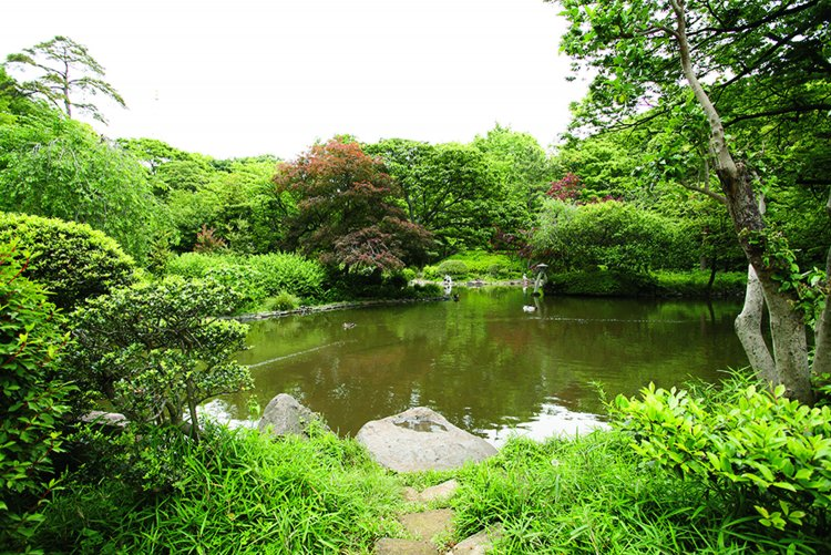 有栖川宮記念公園(ありすがわのみやきねんこうえん)