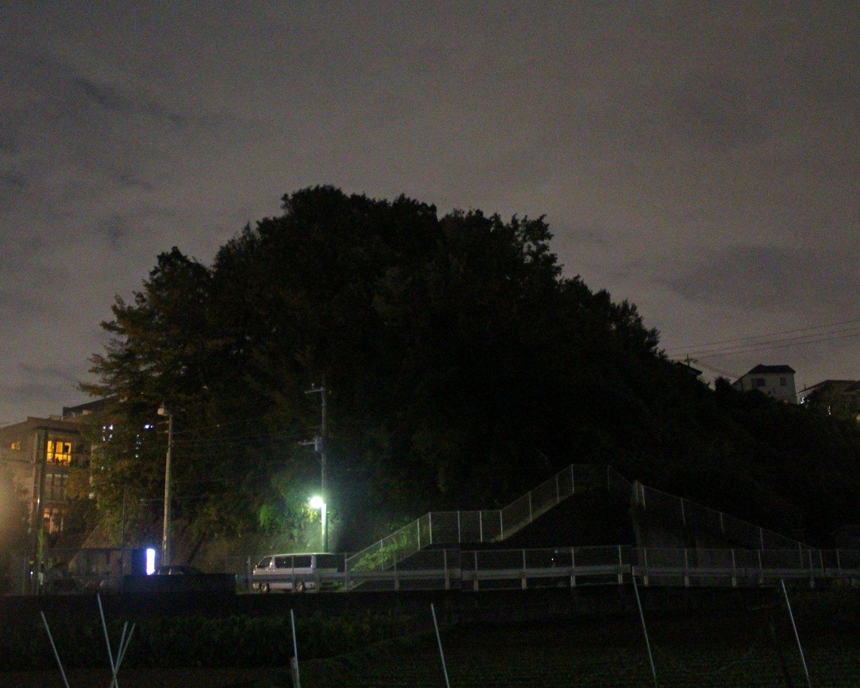 夜の郊外で王蟲(オーム)をメッチャ見る