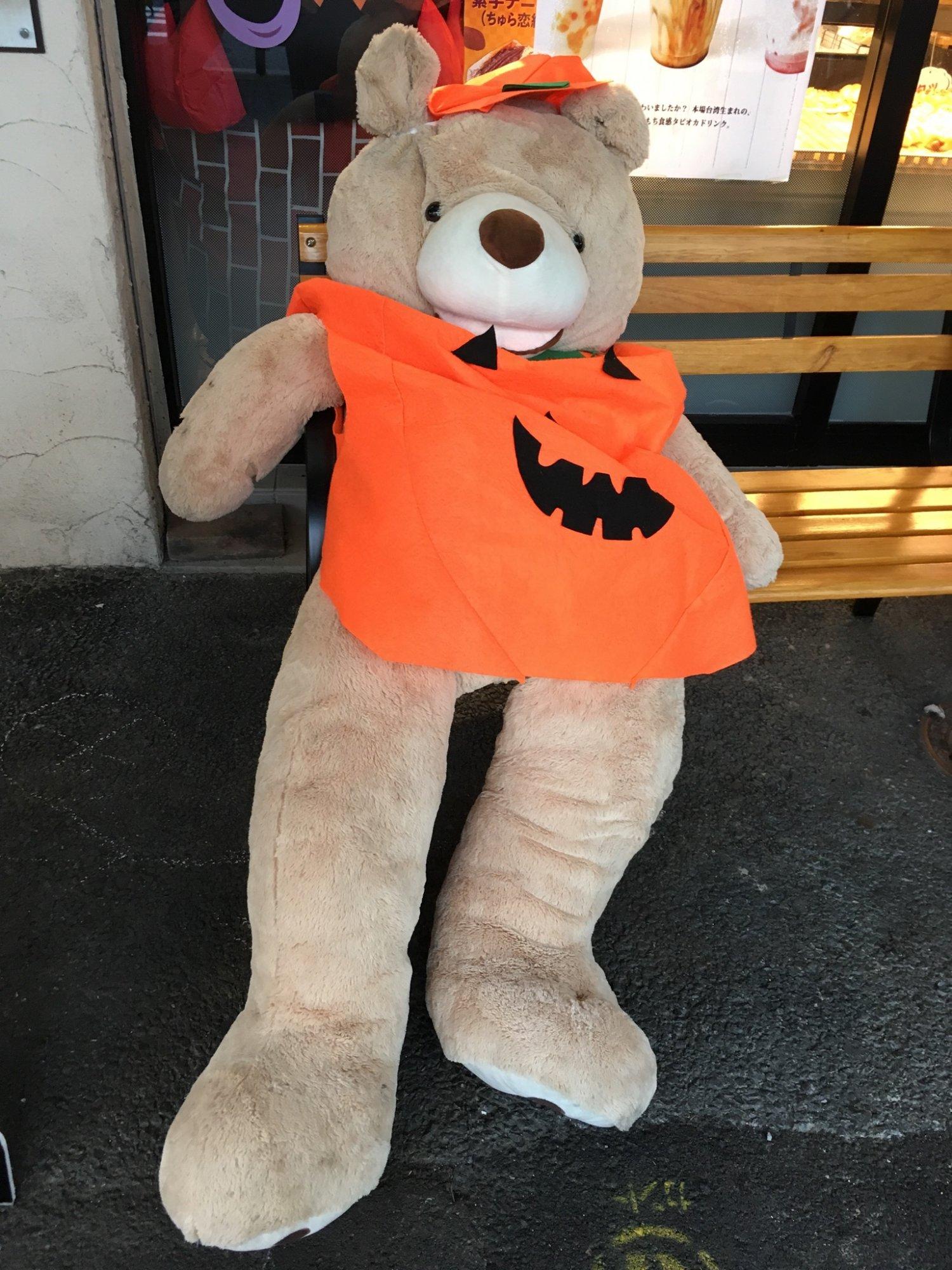 田原町の某店の熊(秋)