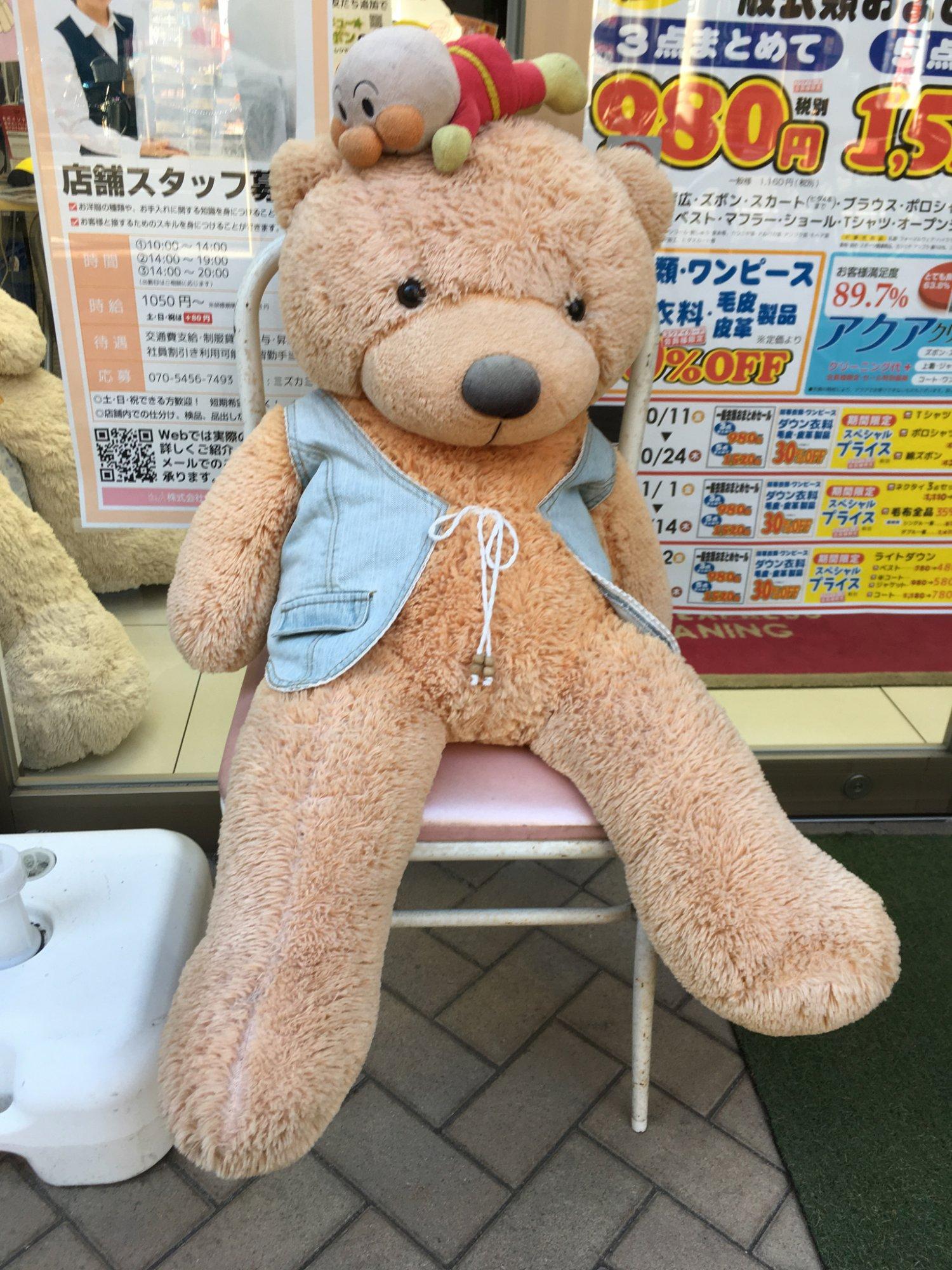 「ホワイト急便 南常盤台店」の熊(店外)