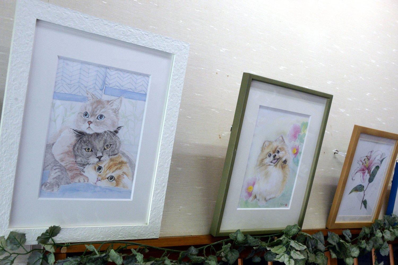 ネコの水彩画は店主の奥さん作。習い始めて2年足らずと思えない。