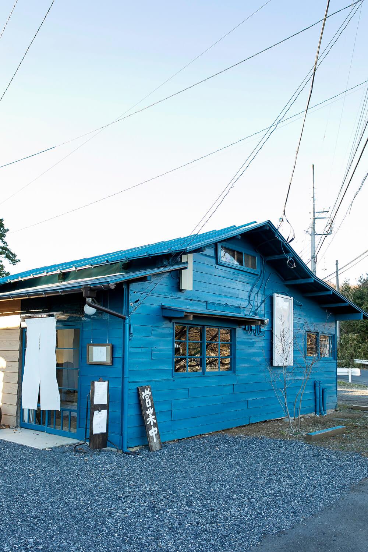 屋根上まで青い!