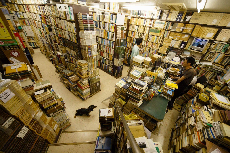 理系といってもビジュアル系の書籍も多く、掘り出し物が満載だ。
