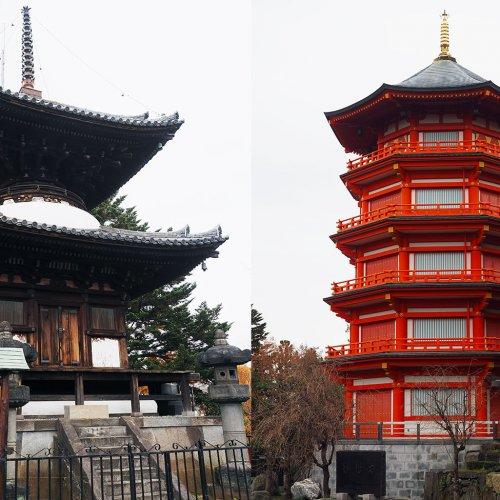 見どころだらけの所沢2大ユニーク寺院