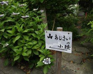 浄妙寺02