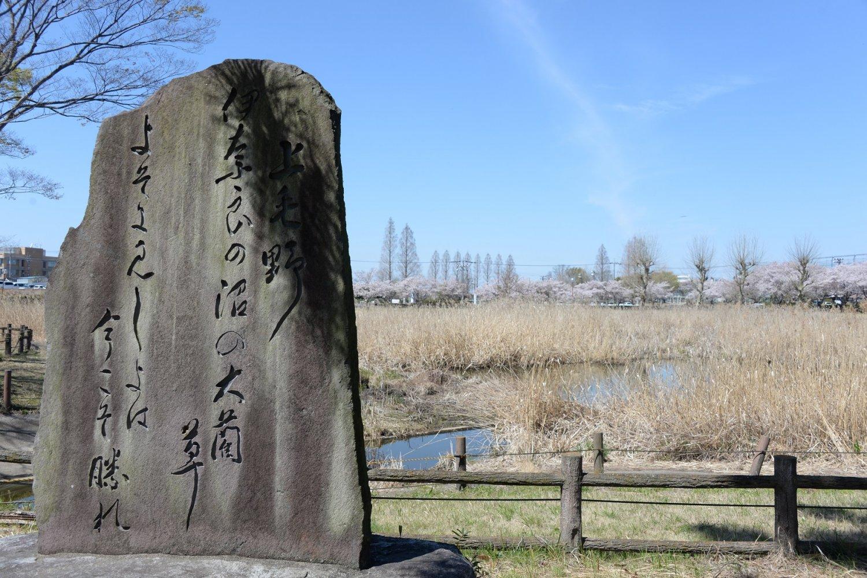 雷電神社が雨乞いの水を採る沼。畔には歌碑や弁財天社が立つ。
