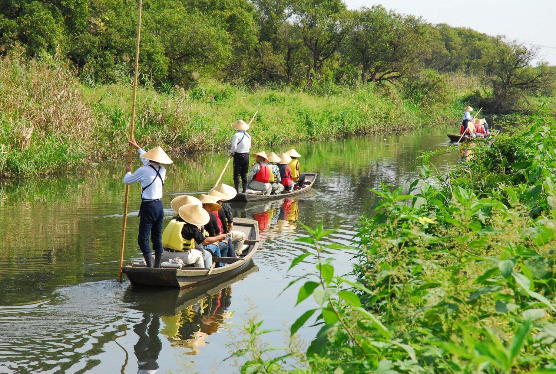 船頭が竹竿一本で揚舟を操り、新緑が映える谷田川をゆっくりと進む。