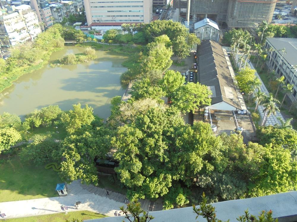 眼下には池が見えて、とても緑豊か。