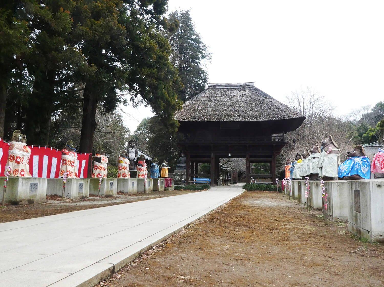 茅葺きが見事な山門。参道にはタヌキの像が。