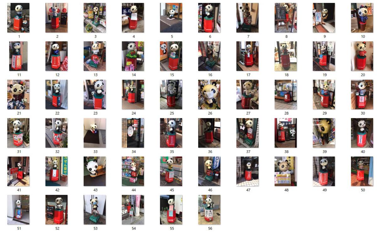 シンシン写真コレクション(今回に限らず、これまで地方で撮ったものも含まれます)