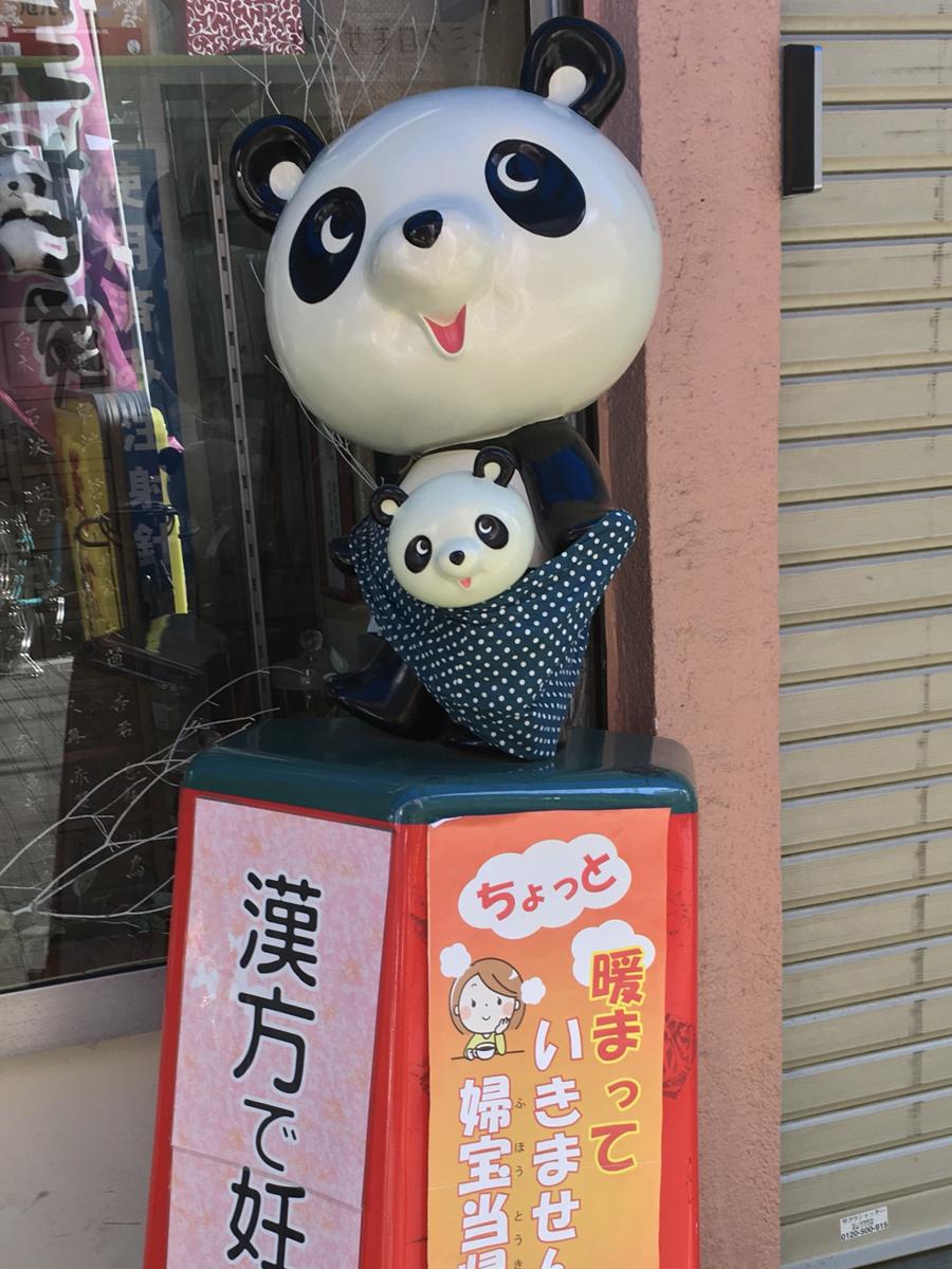 スリングで子パンダを抱くシンシン