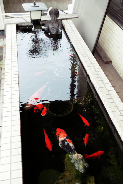 小便小僧が金魚池に浸かる。