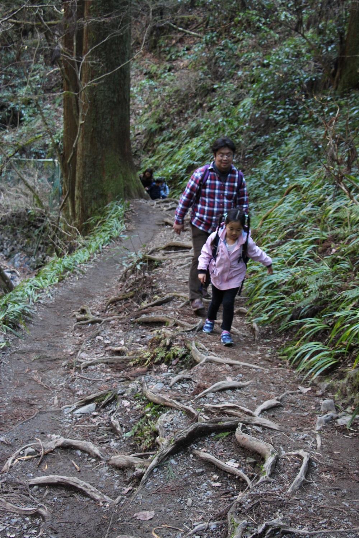 根っこの道も子どもにとってはアトラクション。