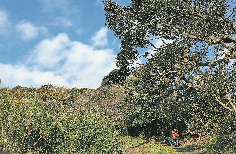 季節のフルーツと海遊びでキッズも大満足!~神奈川県・三浦丘陵~