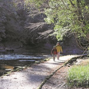 絶景の渓谷歩きを楽しめる遊歩道~千葉県・養老渓谷~