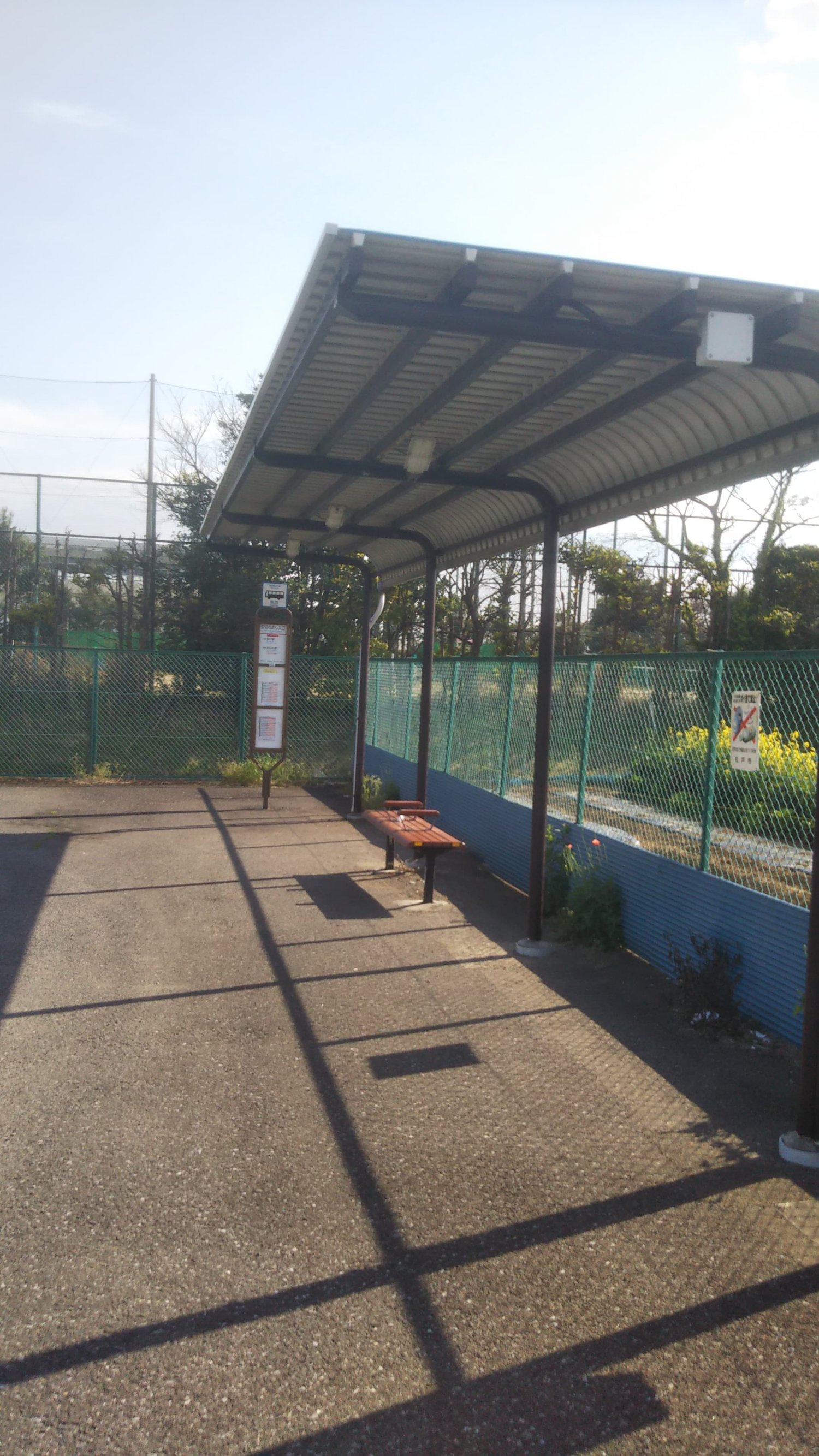 京成バス「松31系統」矢切の渡し停留所。周囲は松戸市特産「矢切ねぎ」などの畑が広がる。