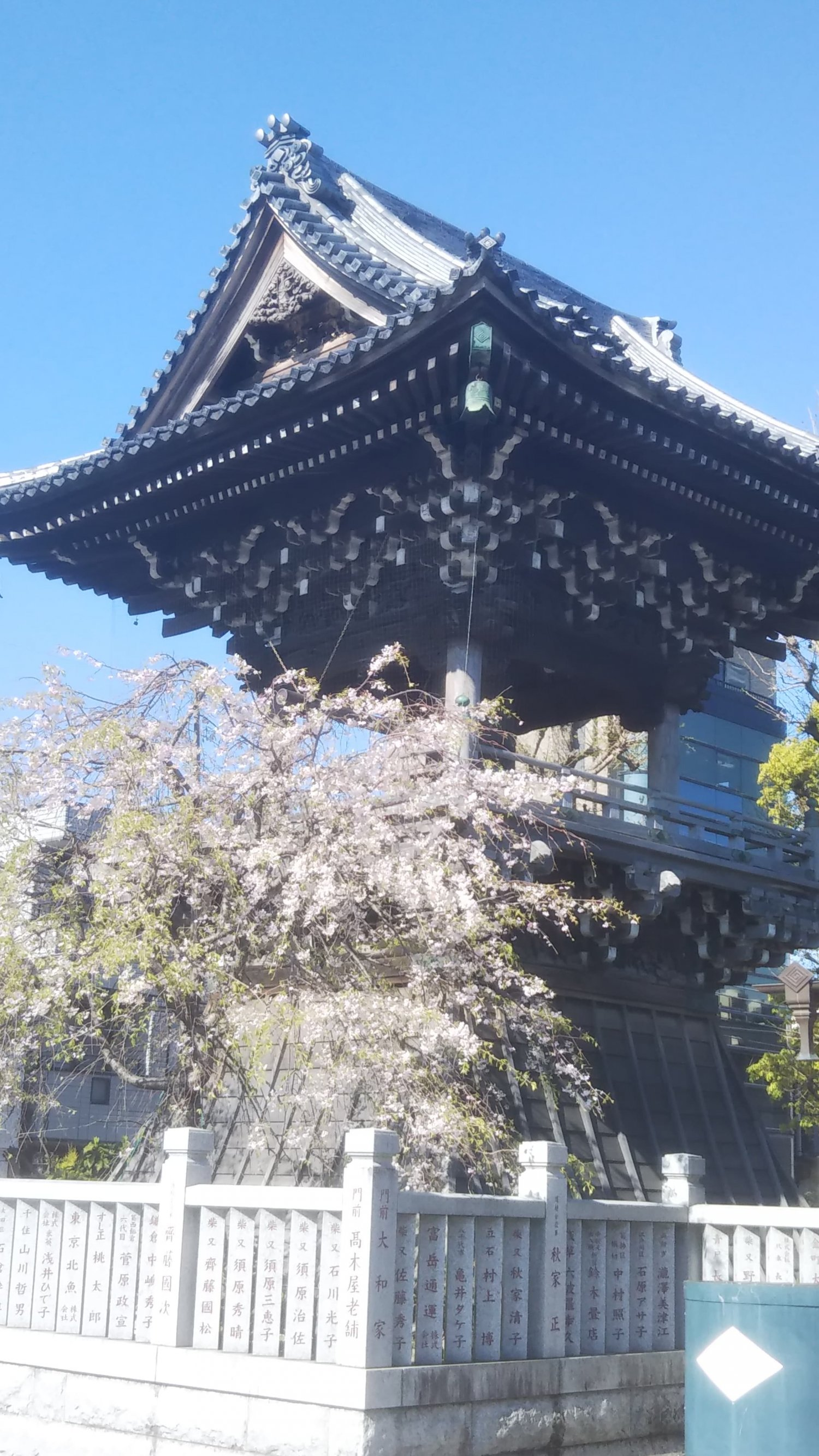 題経寺の鐘楼。鐘をつくのは源公の日課。夕焼けに染まった様子がまた絵になるんです。