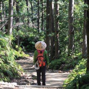 和歌山県 南紀白浜&田辺 ~東京から南紀へたった70分!! ジャイアントずくめの熊野詣でへ~