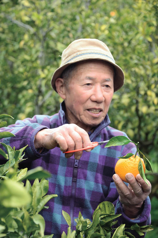 ミカン栽培の楽しさ難しさをとうと うと語る『紀州 原農園』の原さん。