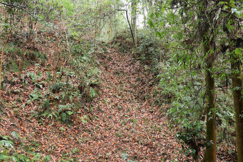 乾曲輪に設けられた竪堀(たてぼり)。はっきりとした痕跡が残る。