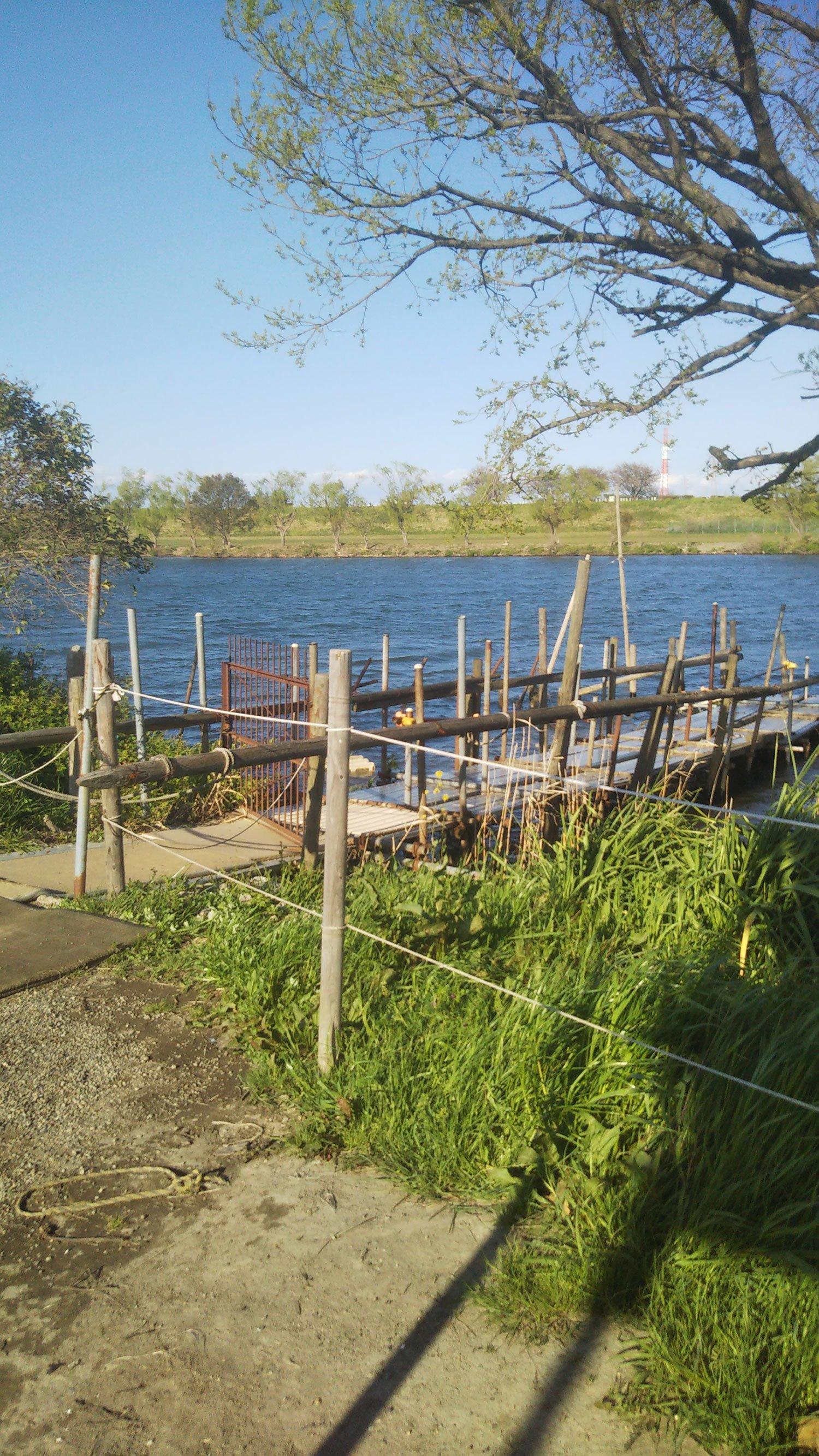 朝日印刷所一同が社内リクリエーションで舟遊び(第6作)。場所は日本ラインでも天竜川でも長瀞でもなく(御前様談)、江戸川です。
