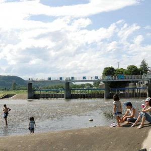 羽村駅からはじめる羽村・福生散歩~玉川上水の水辺を下るネイチャーさんぽコース