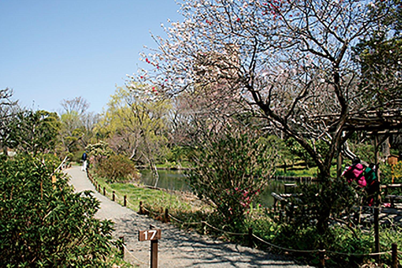 園内には佐藤鞠塢が大切に信仰していた福禄寿が祀られている。