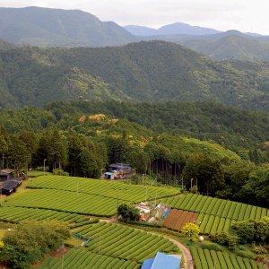静岡県 森町 旅行けば〜遠江の国に 小京都とコーンの香り