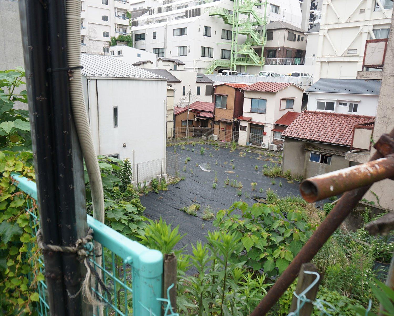 同じ角度で水田のあった場所を撮った写真。