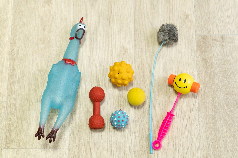 これはごく一部。他にも色々な種類のおもちゃがあります。