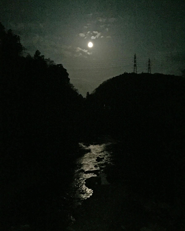鉄塔親子の月見