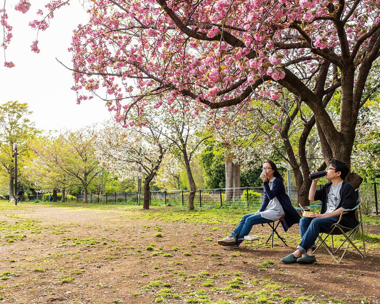 【腰をおろすスポット② 芝生】開放感のある芝生の広場でチェアリングするだけで、気分はピクニック。季節ごとの花を眺める楽しみも。