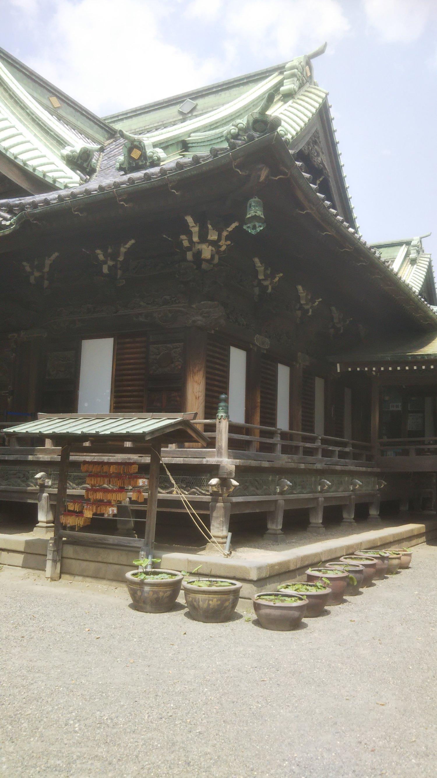 題経寺 帝釈堂の縁側。ここに立つ御前様をローアングルで撮った映像がいちばんカッコイイ!