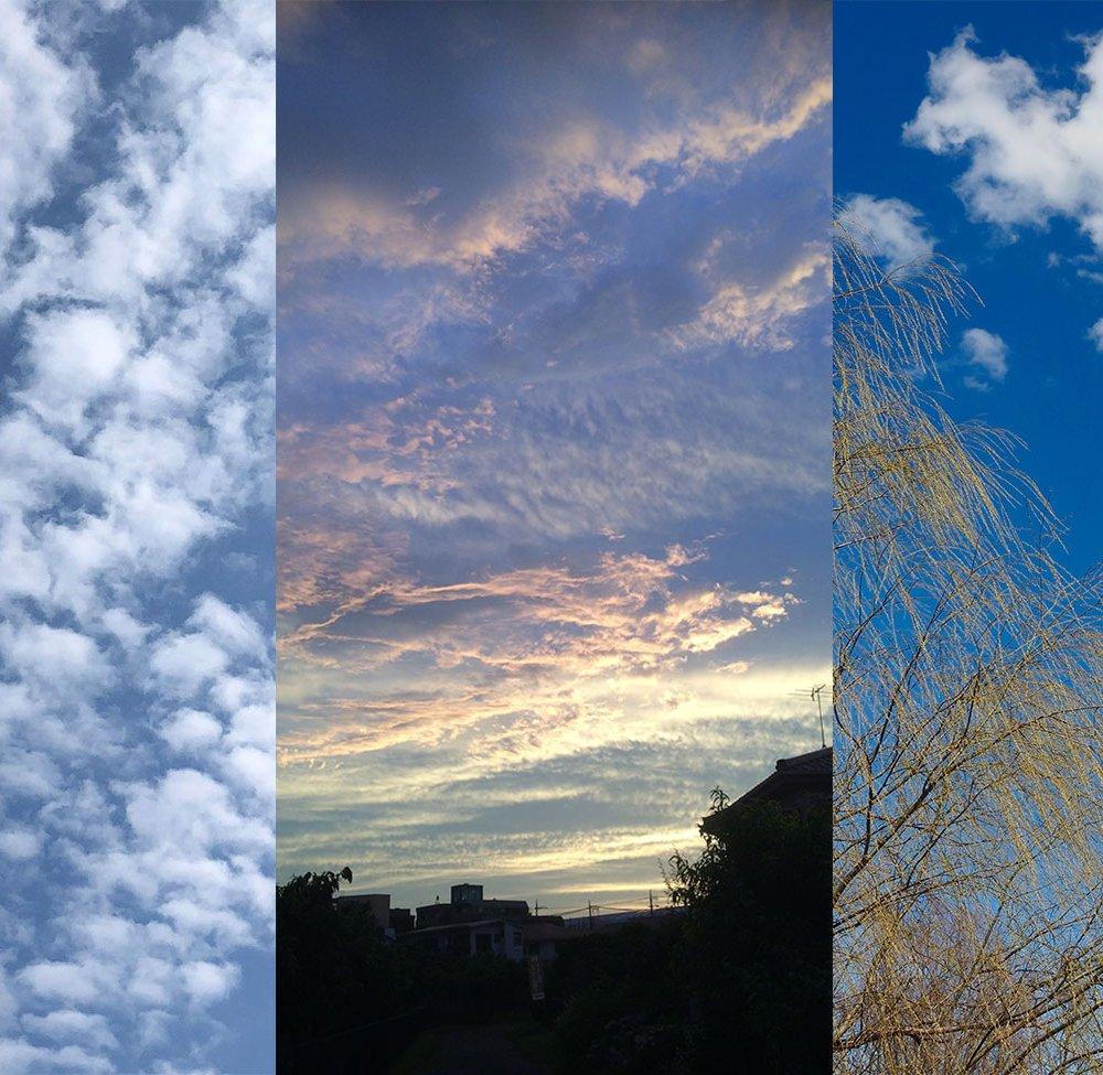 いつも気になるその姿。空の読み方が知りたい!