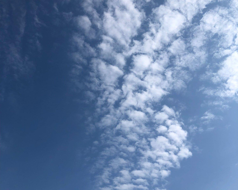 高い空に出る雲。小指で隠れるほどの小ささ。急な天気の崩れはない。