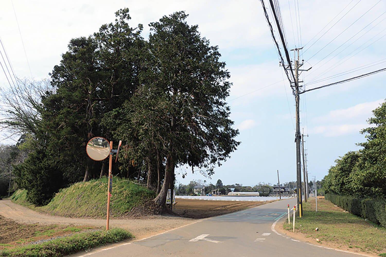 南小から南に向かう道の端に軌道跡が2㎞ほど残る。左は野馬土手。