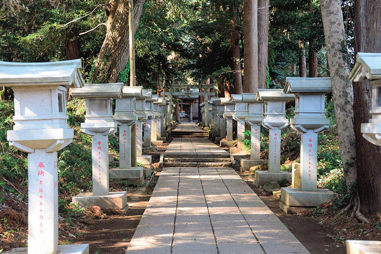 数十基の石灯籠が並ぶ参道の左側に、古墳がポコポコと並んでいる。