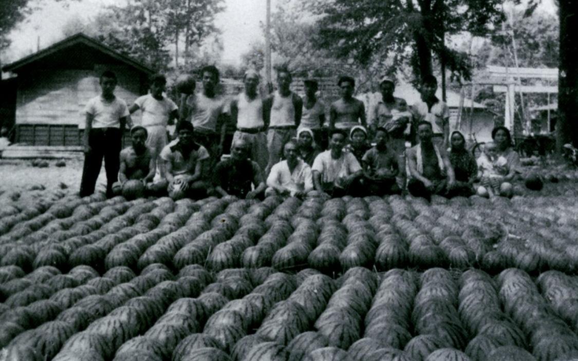 1950年代後半頃の風景。境内にスイカを集荷し都内に出荷していた。