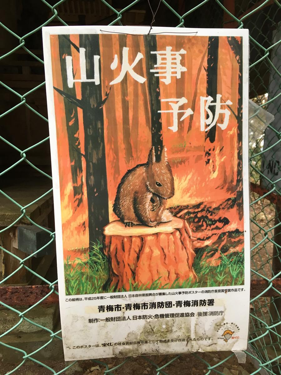 岩茸石山のもの悲しいリスポスター(2018年)