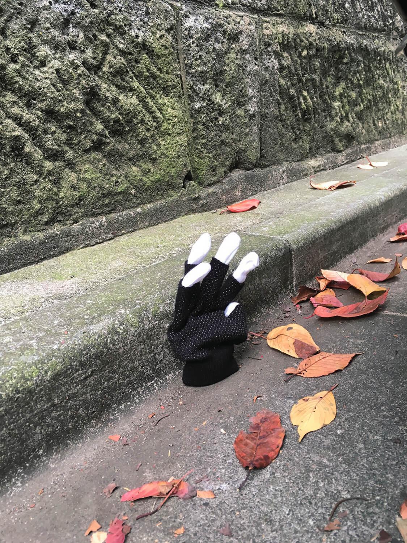 石井さん撮影の片手袋。