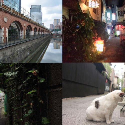 【みなさんの投稿を紹介します!】さんたつ公式サポーターがつくる「東京さんぽ図鑑」