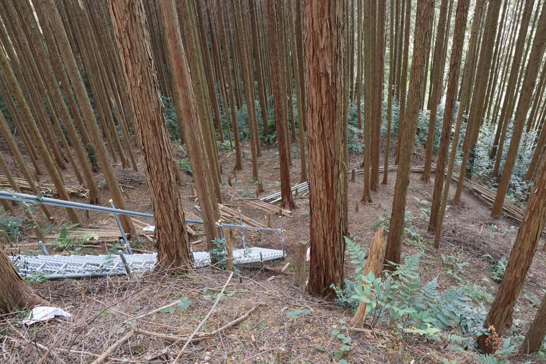 松永屋敷エリアの先端部。急斜面に手すり付きの鉄階段が巡らせてあった。