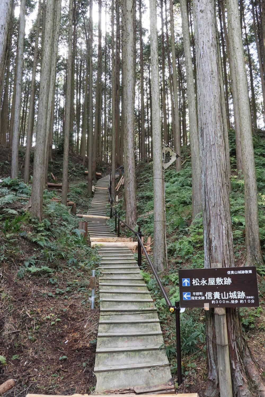 案内板前の急斜面。当時はここには木道はなかったはず。