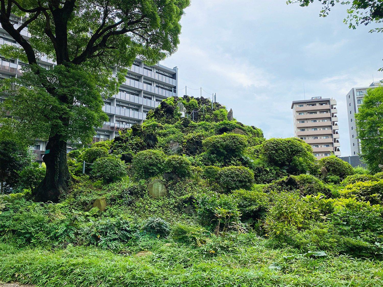 緑に覆われて本当の山みたい。麓には浅間神社も鎮座する。
