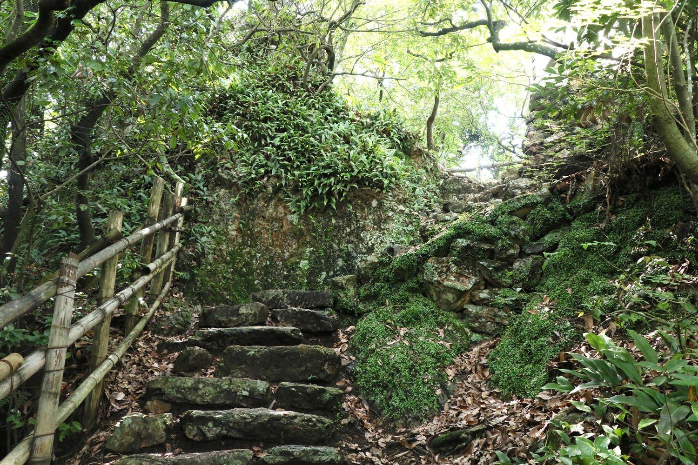 天守から裏門へ。岩と岩の間を縫うように下る。