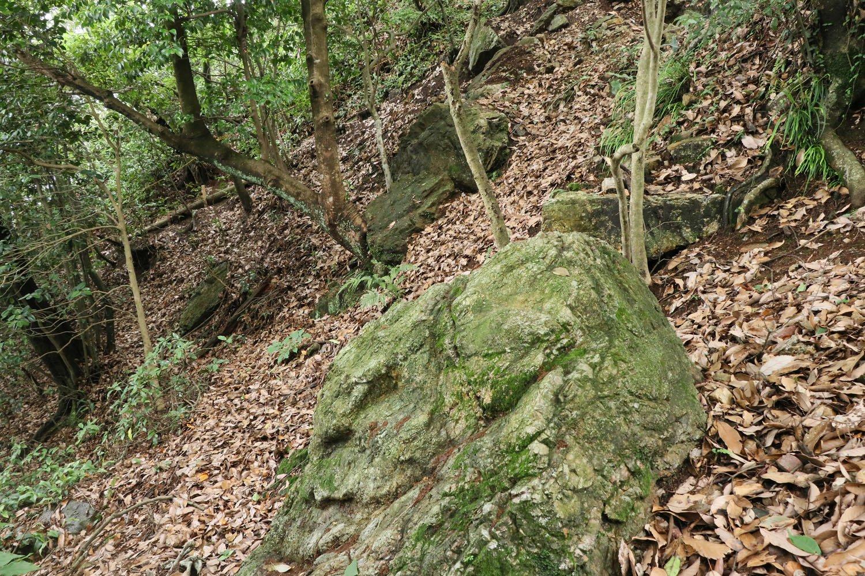 裏門付近には遺構とおぼしき巨石が散乱。