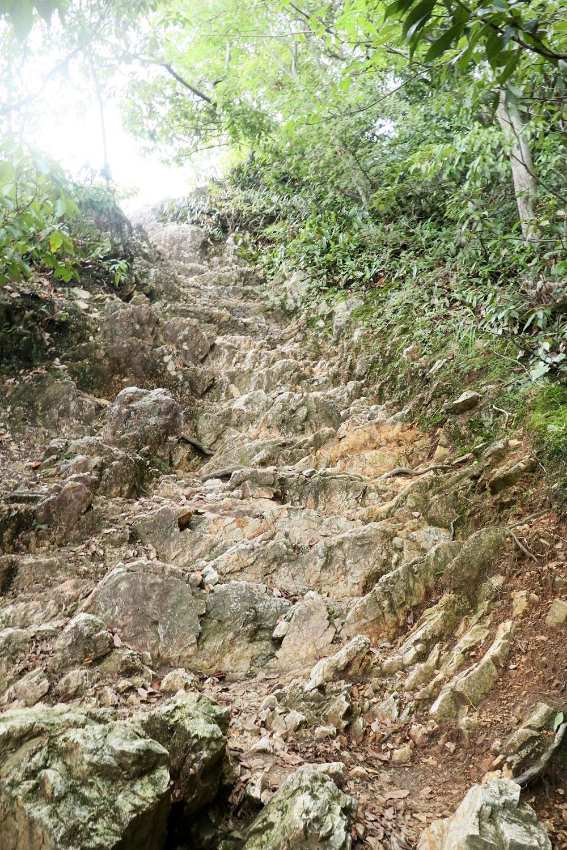 登山道、というよりほぼ岩。ただし階段上に削られている。
